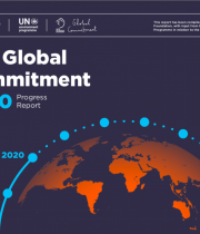The Global Commitment-2020 Progress Report