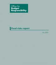 Fiscal risks report