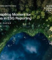 ESG报告:助力中国腾飞 聚势共赢